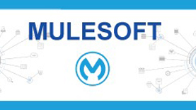 mule soft Training in Pune